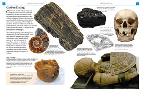 media|img/prod/etc/sample/prev/10-2-438-fossils.jpg