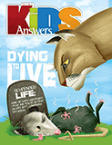 Kids Answers Mini-magazine - Vol. 7 No. 3