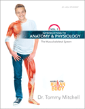 Introduction to Anatomy & Physiology: The Musculoskeletal System
