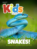 Kids Answers Mini-magazine - Vol. 14 No. 3