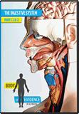 Body of Evidence 6: Digestive System